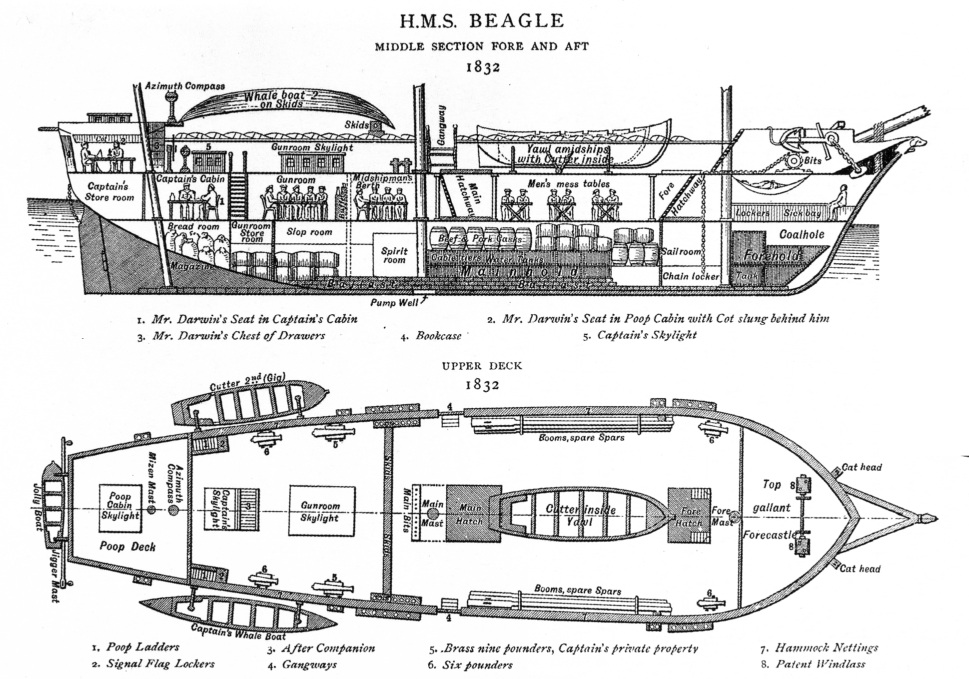 Hms Beagle With Plans Unrated And Other Light Combat Vessels 5 Post Ignition Switch Wiring Diagram Darwin Bio 3